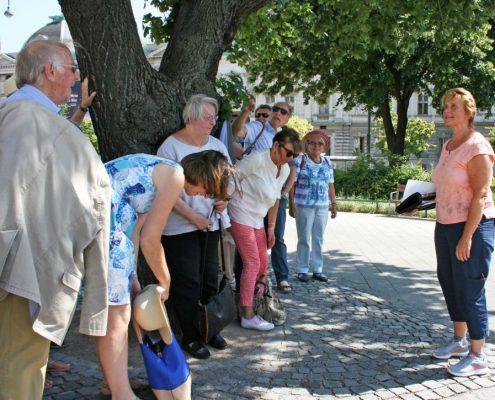 Winckelmann Akademie fuer Kunstgeschichte Muenchen, Exkursion Wien Juni 2017-9